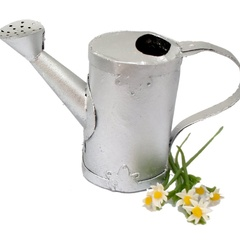Image of Watering Can